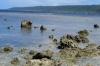 Hideaway Island