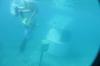 Underwater Post Office - Hideaway Island